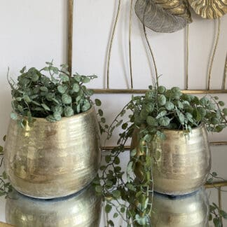 Keramik urtepotteskjuler guld stor